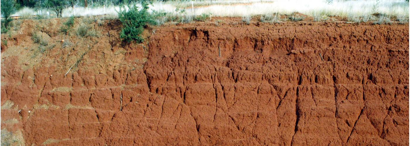 Red Earth soil profile